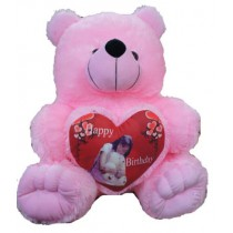249 no. Teddy With Photo Heart