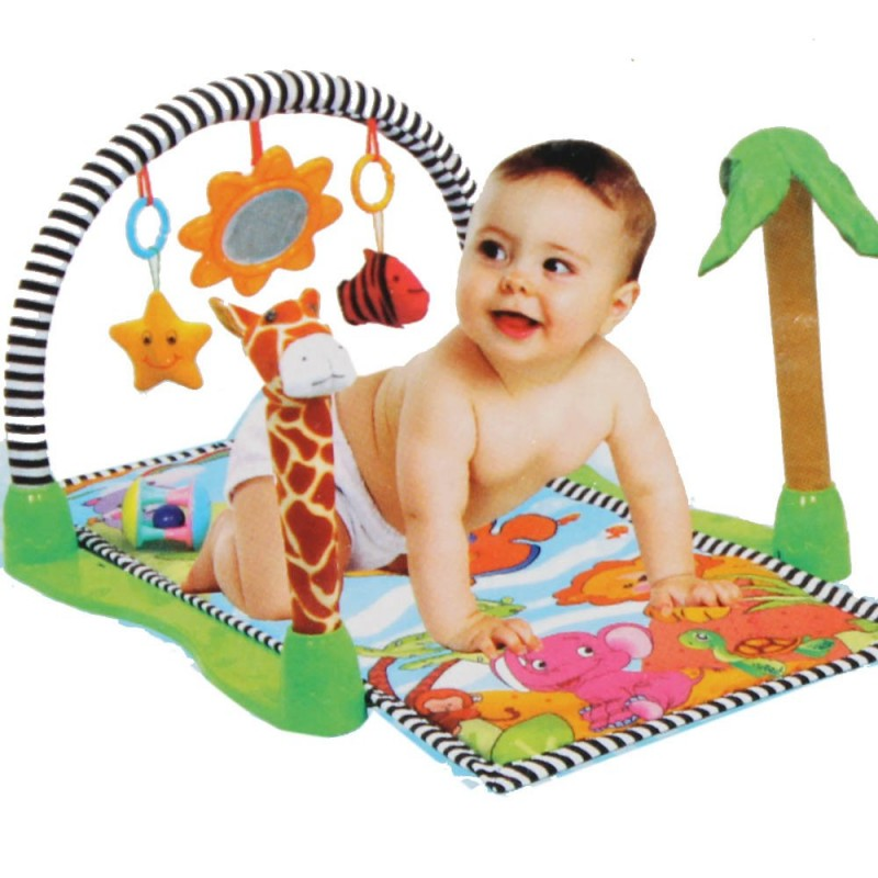 Steel Craft Smarty Play Gym